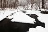 Sawmill Creek winter scene. Darien, IL<br /> <br /> IL-100222-0054