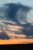 Prairie sunset. Naperville, IL<br /> <br /> IL-090404-0034