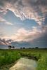 Summer sunset at Springbrook Prairie. Naperville, IL<br /> <br /> IL-120729-0018