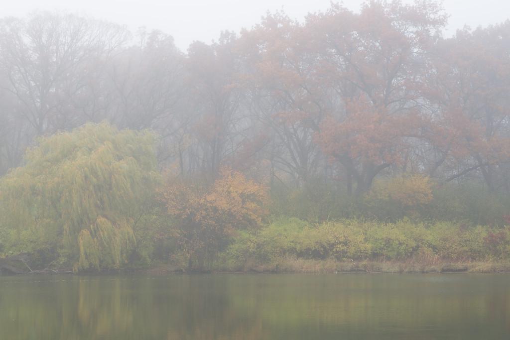 Lake Fog II