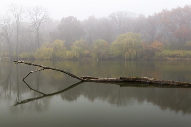 Lake Fog I
