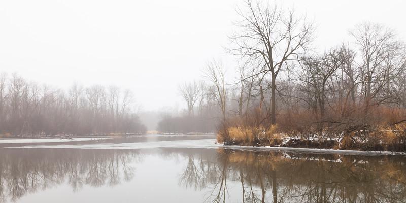 A foggy winter day in McDowell Grove. Naperville, IL<br /> <br /> IL-091214-0012