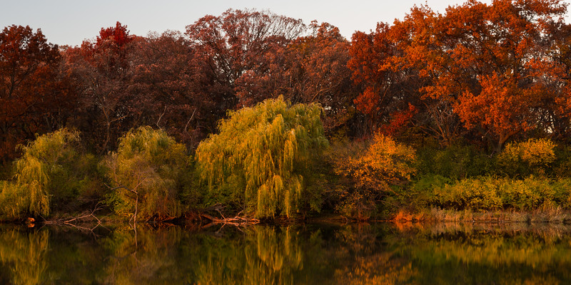 Sunset light shines on the tree line in the shore of one of the lakes in Herrick Lake Forest Preserve. Naperville, IL<br /> <br /> IL-151103-0144
