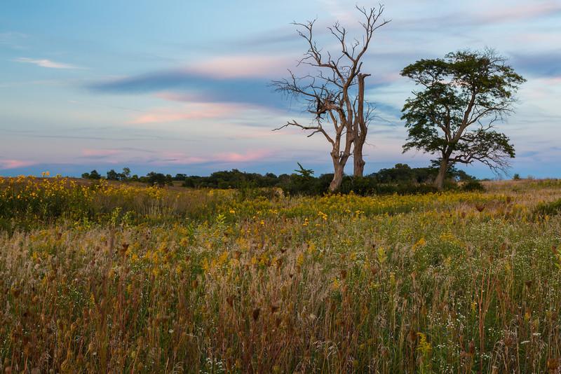 Prairie and Sunset