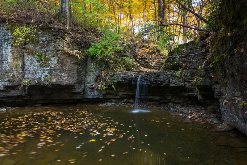 Hidden Fall Autumn