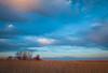 Springbrook Prairie spring scene. Naperville, IL<br /> <br /> IL-090404-0010