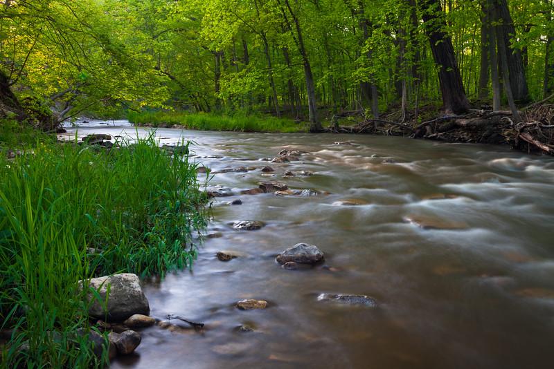 Sawmill Creek spring scene. Darien, IL<br /> <br /> IL-090514-0014