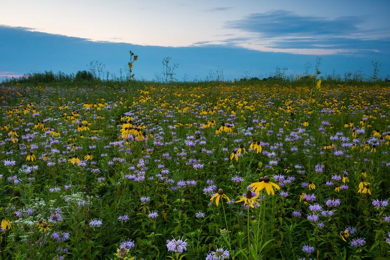 Prairie Colors