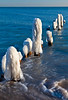 Ice covered pier posts along the shoreline in Openlands Lakeshore Preserve. Highland Park, IL<br /> <br /> IL-091212-0074