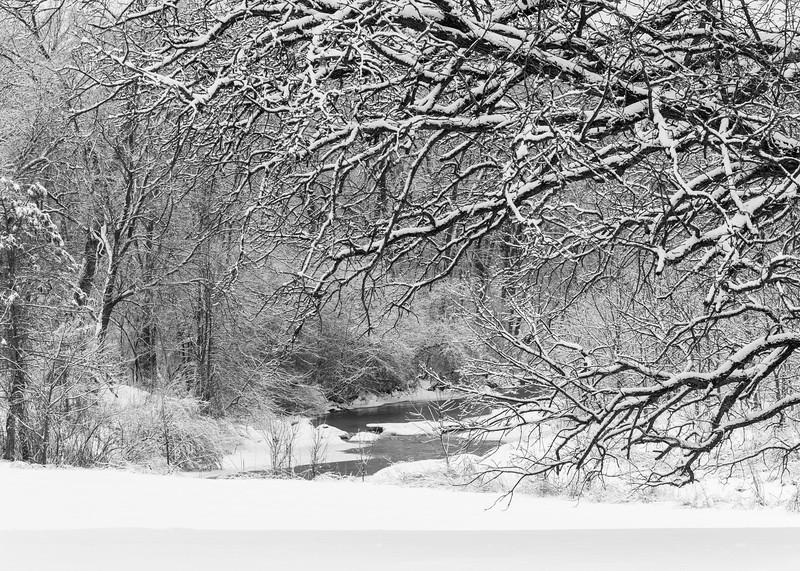 LO 007<br /> <br /> Ferson Creek flows through a snowy winter landscape at Leroy Oaks Forest Preserve, Kane County, Illinois.