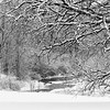 LO 007<br /> <br /> Ferson Creek flows through a snowy winter landscape at Leroy Oaks Forest Preserve, Kane County, Illinois.