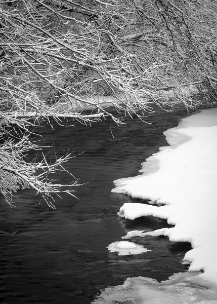 LO 006<br /> <br /> Icebergs form in the freezing waters of Ferson Creek as it flows through Leroy Oaks Forest Preserve in Kane County, Illinois.