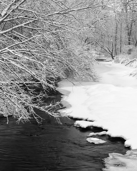 LO 005<br /> <br /> Icebergs form in the freezing waters of Ferson Creek as it flows through Leroy Oaks Forest Preserve in Kane County, Illinois.