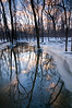 MW 006                   Winter sunset light reflecting on Spring Creek, Messener Woods Forest Preserve, Will County, Illinois.