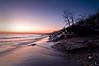 OLP 008                 A winter sunrise on the Lake Michigan shore at Openlands Lakeshore Preserve, Fort Sheridan, Illinois.