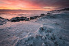 OLP 033   Sunrise over the winter shelf ice that has built up along the Lake Michigan shoreline at Openlands Lakeshore Preserve, Fort Sheridan, Illinois.