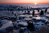 OLP 010                     A winter sunrise on the Lake Michigan shore at Openlands Lakeshore Preserve, Fort Sheridan, Illinois.