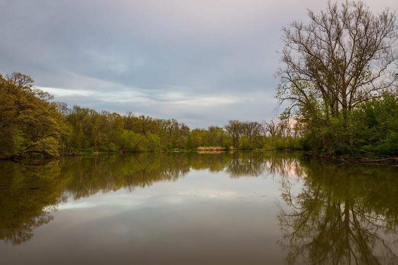 McKinley Woods Reflection