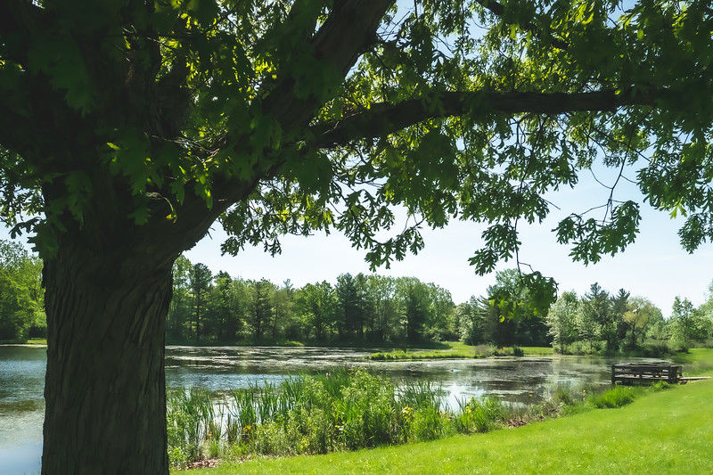 Horseshoe Pond at Kennekuk County Park in Vermilion County Illinois