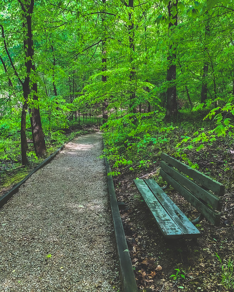 Lincoln Trail State Park in Marshall Illinois