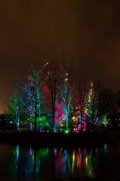 Morton Arboretum Illumintation