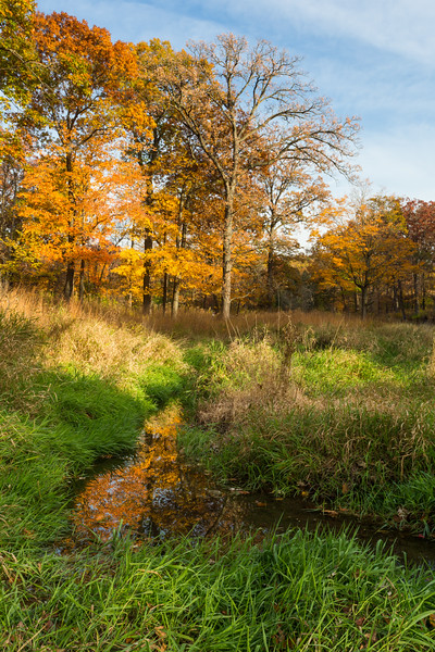 Willoway Brook Colors
