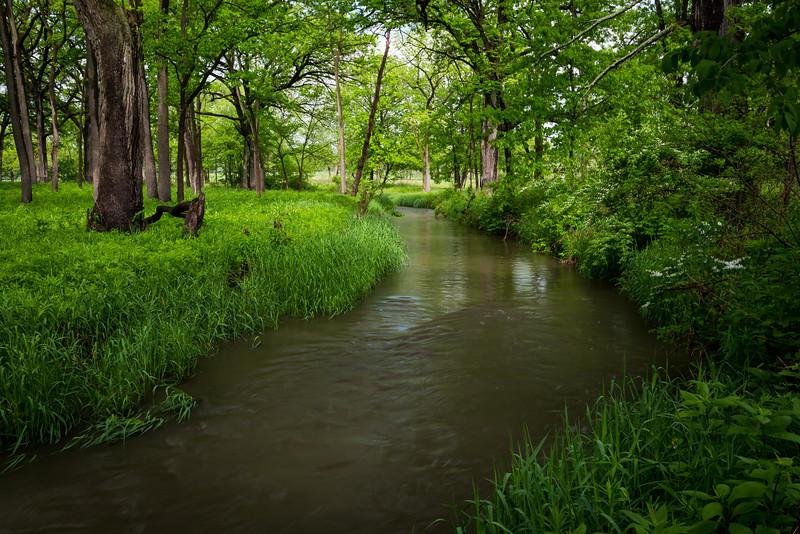 Willoway Brook Spring