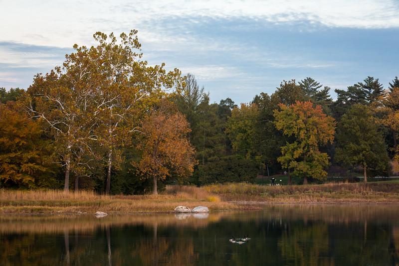 Meadow Lake Autumn Evening
