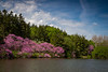 Lake Marmo Spring