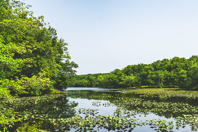 Red Hills State Park in Sumner Illinois