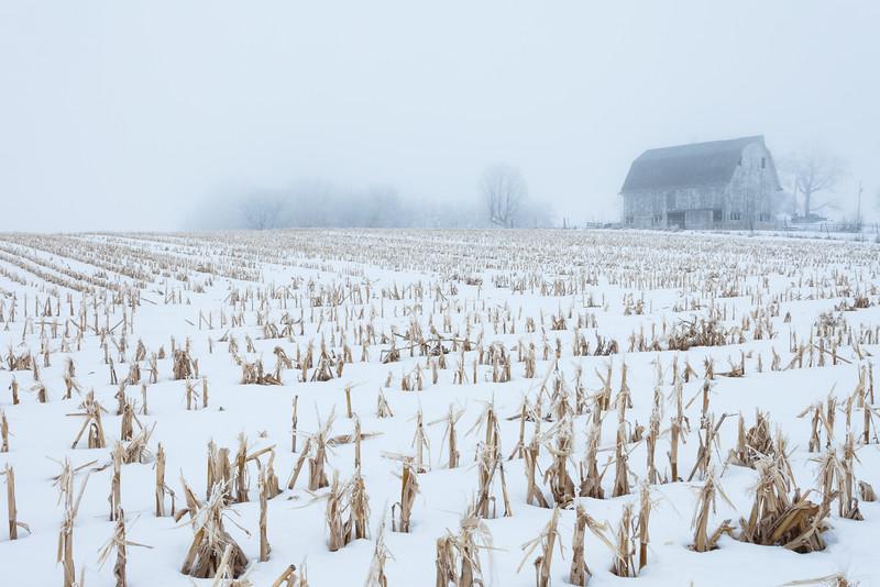 Winter fog over a Yorkville farm. Newark, IL<br /> <br /> IL-100117-0016