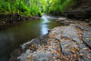 Fallen leafs accumulate of the limestone ridges along Waubonsie Creek. Oswego, IL<br /> <br /> IL-180816-0011
