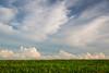 Rural Summer Sky