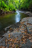 Fallen leafs accumulate of the limestone ridges along Waubonsie Creek. Oswego, IL<br /> <br /> IL-180816-0014