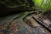 The first signs of autumn can be seen lying along a canyon wall in Matthiessen State Park. Lasalle County, IL<br /> <br /> IL-160925-0039