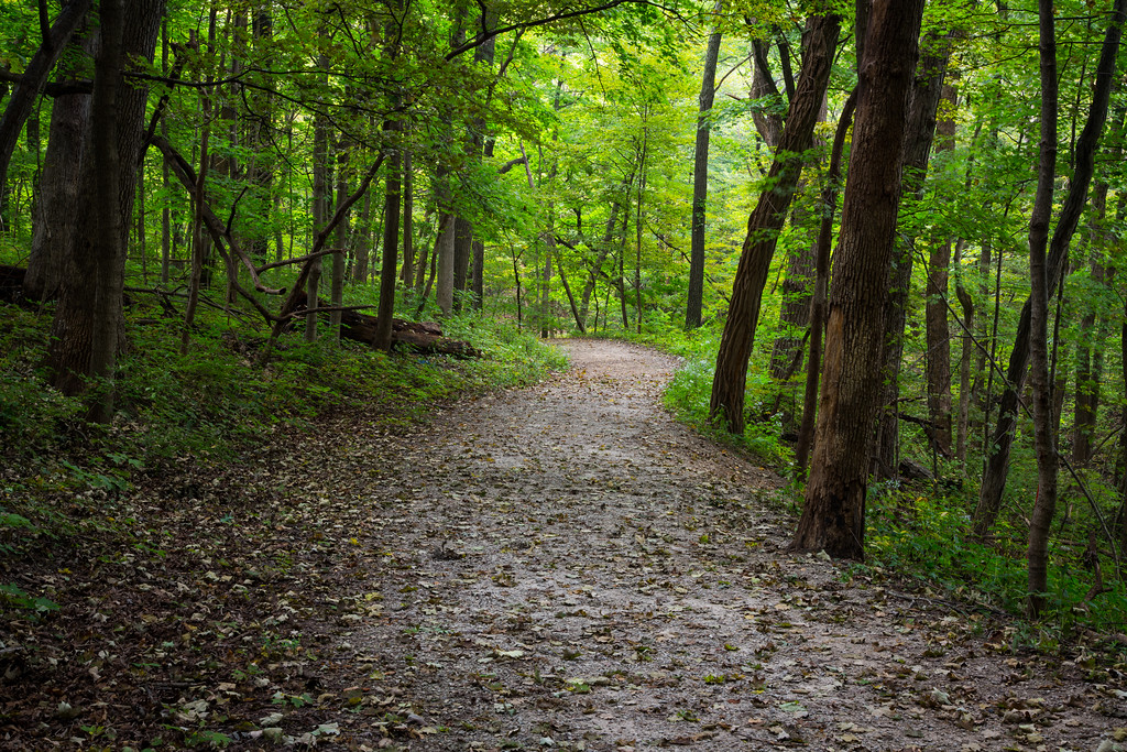 One of the many trails that meanders in Matthiessen State Park. Lasalle County, IL<br /> <br /> IL-160925-0013