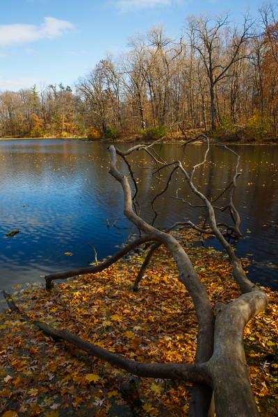 Matthiessen Lake Autumn