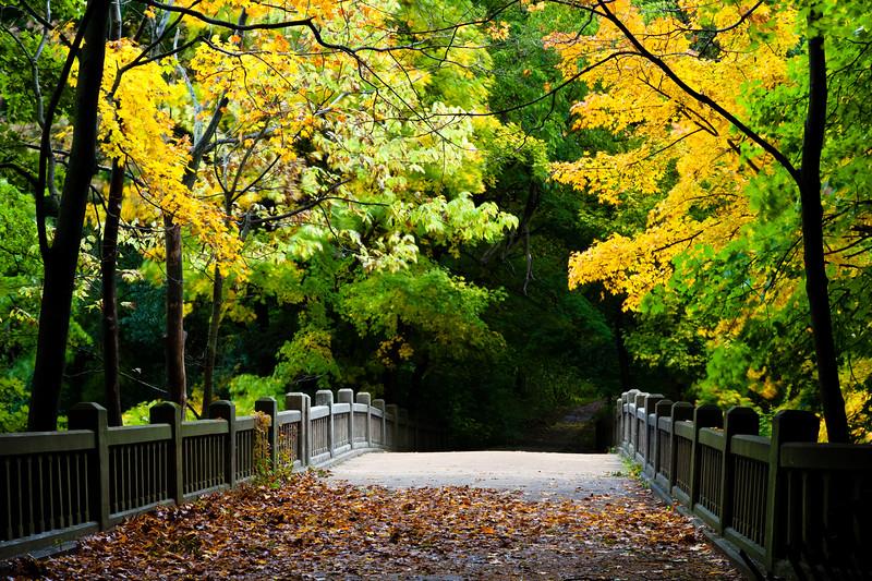 Autumn color surround the bridge over Lake Falls. Lasalle County, IL<br /> <br /> IL-091009-0073