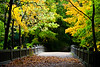 Autumn color surround the bridge over Lake Falls. Lasalle County, IL<br /> <br /> IL-091009-0073