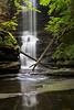 Lake Falls Spring 1