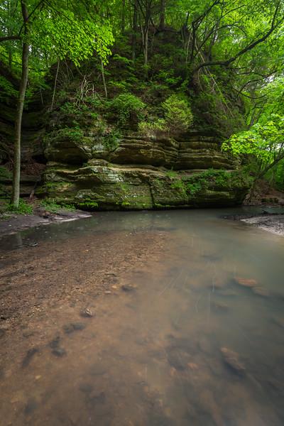Bend of the Matthiessen creek near Cedar Point. Lasalle County, IL<br /> <br /> IL-160604-0083