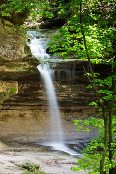 Lasalle Waterfall