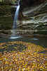 Ottawa Canyon waterfall and fallen oak leafs. Lasalle Canyon, IL<br /> <br /> IL-191101-0090