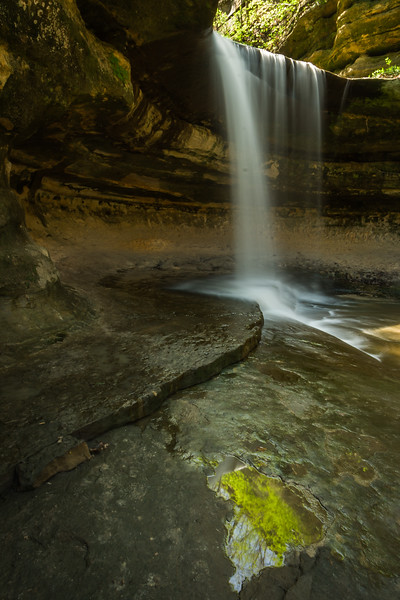 Spring color reflects on the wet limestone on Lasalle Canyon. Lasalle County, IL<br /> <br /> IL-070428-0021