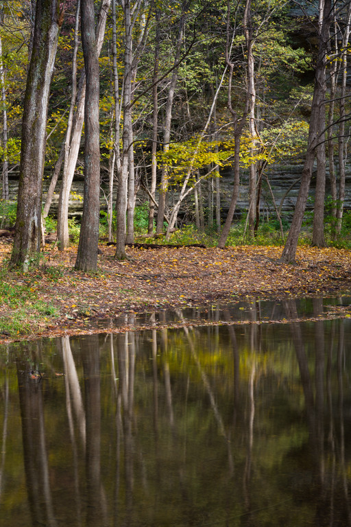 Illinois Canyon Autumn Reflection