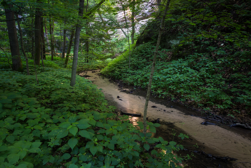 Lasalle Canyon Creek