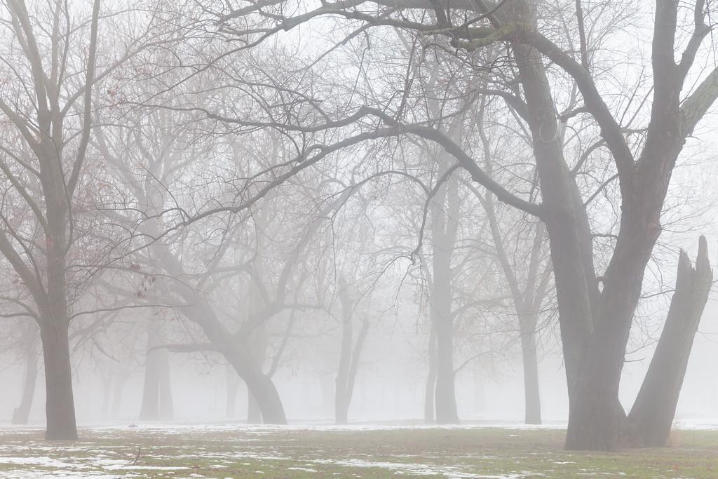Heavy fog descends into the wooded area near the Starved Rock visitor center. Lasalle County, IL<br /> <br /> IL-101231-0022