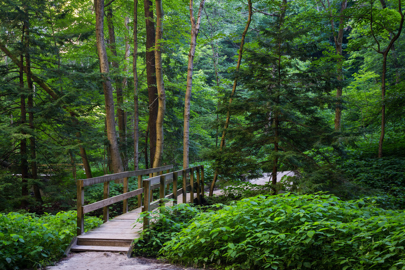 Lasalle Canyon Trail