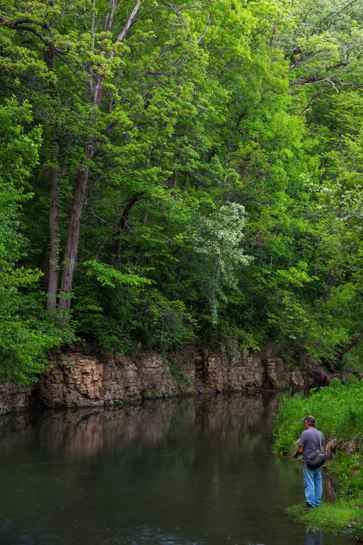 Pine Creek Fishing