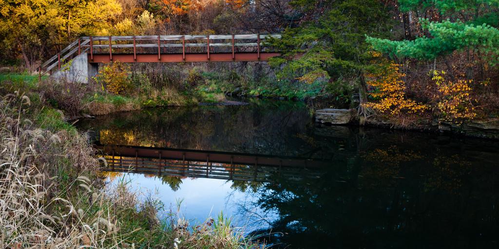 White Pines autumn scene. Mt. Morris, IL<br /> <br /> Il-111029-0090